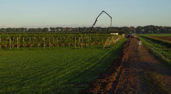 Vordering bouw Wijngoed Wilgenhorst